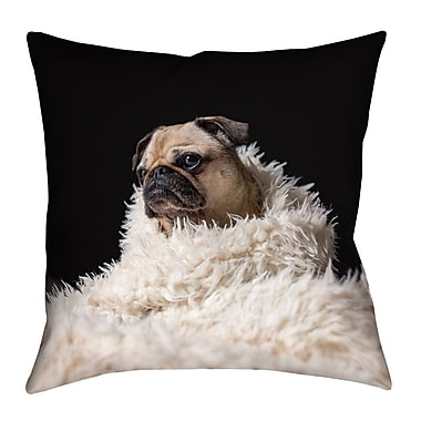 Latitude Run Karlos Pug in Blanket Square Pillow Cover; 18'' x 18''