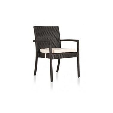Varick Gallery Parvarti Patio Dining Chair w/ Cushion