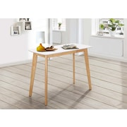 Varick Gallery Pascua Retro Modern Wood Writing Desk
