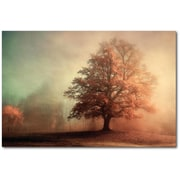 Alcott Hill 'Standing Proud' Graphic Art Print on Canvas