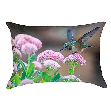Latitude Run Holte Hummingbird Cotton Pillow Cover