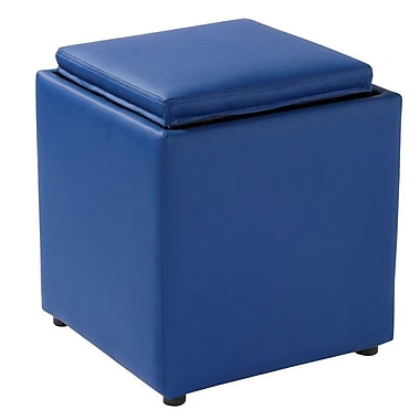 Ebern Designs Elsner Square Storage Ottoman; Blue
