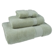 Darby Home Co Bell 3 Piece Cotton Towel Set; Sage