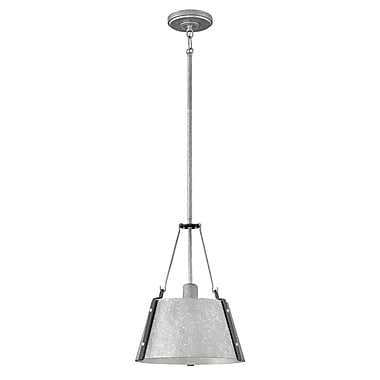 Brayden Studio Dobbs Ferry Modern 1-Light Mini Pendant; Galvanized