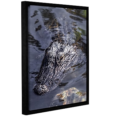 East Urban Home 'Gator 1' Framed Photographic Print; 24'' H x 18'' W x 2'' D