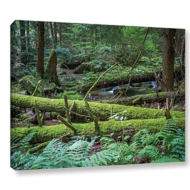 Latitude Run 'Allegheny 3' Photographic Print on Wrapped Canvas; 36'' H x 48'' W x 2'' D