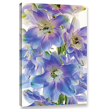 Latitude Run 'Floral Finery' Graphic Art on Wrapped Canvas; 12'' H x 8'' W x 2'' D