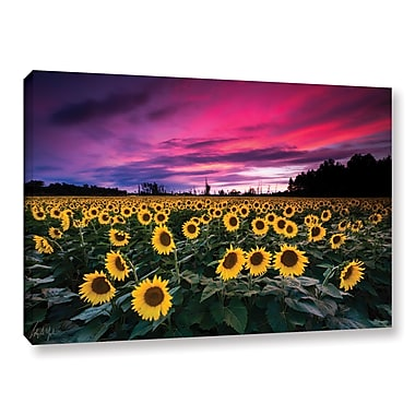 Latitude Run 'Sunflower Sunset' Photographic Print on Wrapped Canvas; 24'' H x 36'' W x 2'' D