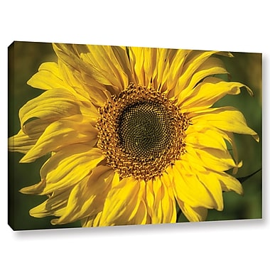 August Grove 'Sunflower' Graphic Art on Wrapped Canvas; 8'' H x 12'' W x 2'' D