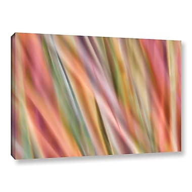 Latitude Run 'Xtractgrass' Graphic Art on Wrapped Canvas; 12'' H x 18'' W x 2'' D