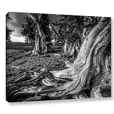 Latitude Run 'Great Basin 01' Photographic Print on Wrapped Canvas; 24'' H x 32'' W x 2'' D