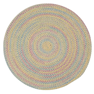 Harriet Bee Oliver Braided Reversible Area Rug; Oval 12' x 15'