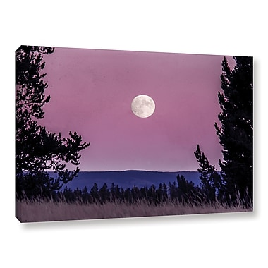 Latitude Run 'Pink Moon 01' Photographic Print on Wrapped Canvas; 8'' H x 12'' W x 2'' D