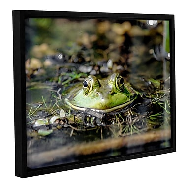 Latitude Run 'Frog' Framed Photographic Print; 36'' H x 48'' W x 2'' D