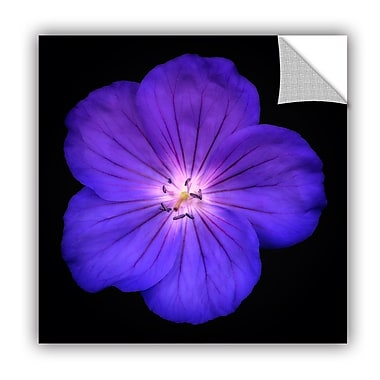 Ebern Designs 'Glowing Blue Flower' Photographic Print; 18'' H x 18'' W x 0.1'' D