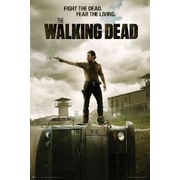 Frame USA 'The Walking Dead - Jailhouse' Graphic Art Print Poster