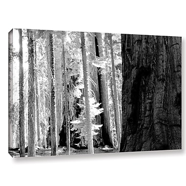 Union Rustic 'California 4' Photographic Print on Wrapped Canvas; 32'' H x 48'' W x 2'' D
