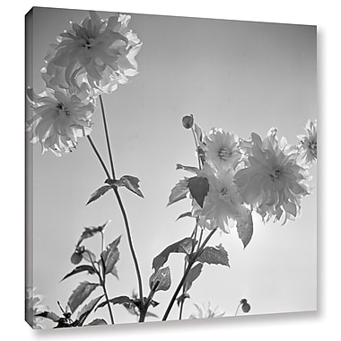 'Flowers at a Public Garden in Munich, Germany 1930s 2' Photographic Print on Wrapped Canvas