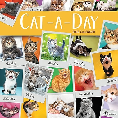 Tf Publishing 2018 Cat-A-Day Wall Calendar 12