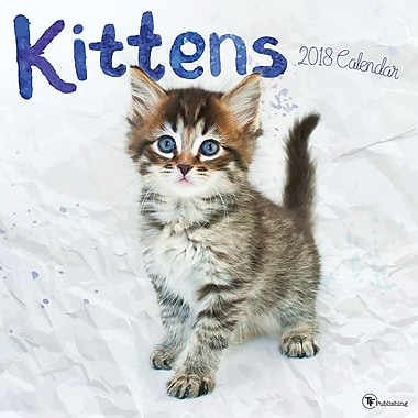 Tf Publishing 2018 Kittens Wall Calendar 12