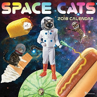Tf Publishing 2018 Space Cats Wall Calendar 12