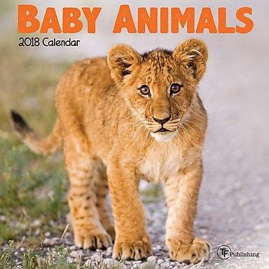 Tf Publishing 2018 Baby Animals Mini Calendar 7