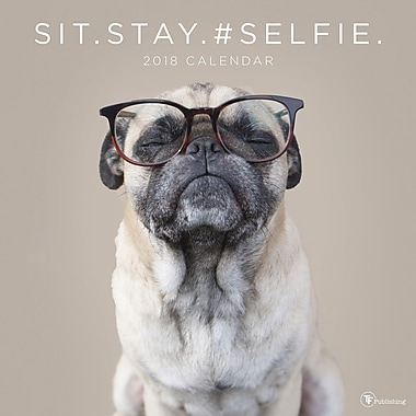 Tf Publishing 2018 Sit.Stay.#Selfie. Wall Calendar 12
