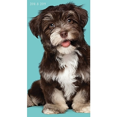 Tf Publishing 2018-2019 Puppies 2 Year Pocket Planner 3.5