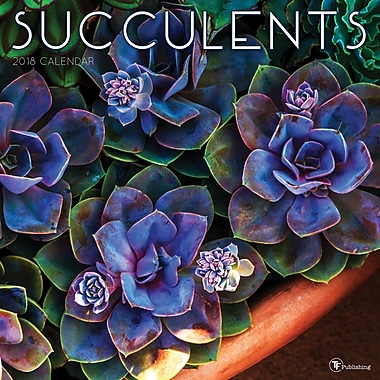 Tf Publishing 2018 Succulents Wall Calendar 12