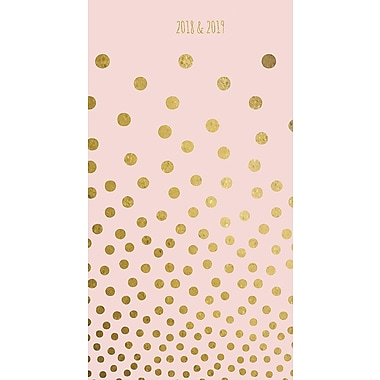 Tf Publishing 2018-2019 Gold Dots 2 Year Pocket Planner 3.5
