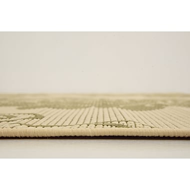Darby Home Co Malinda Light Green Outdoor Area Rug; 8' x 11'3''