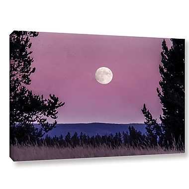 Latitude Run 'Pink Moon 01' Photographic Print on Wrapped Canvas; 16'' H x 24'' W x 2'' D