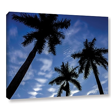 Ivy Bronx 'Palm Trees 01' Photographic Print on Wrapped Canvas; 36'' H x 48'' W x 2'' D