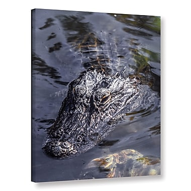 East Urban Home 'Gator 1' Photographic Print on Wrapped Canvas; 32'' H x 24'' W x 2'' D