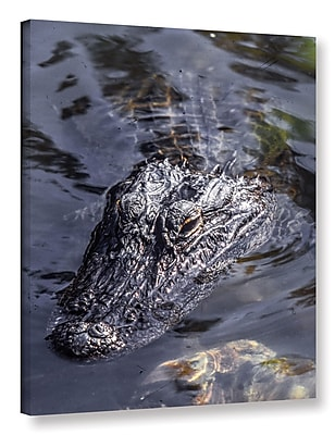East Urban Home 'Gator 1' Photographic Print on Wrapped Canvas; 18'' H x 14'' W x 2'' D