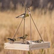 Perky Pet Hanging Tray Bird Feeder