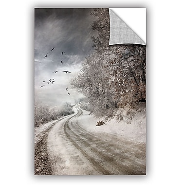 East Urban Home 'The Road To Cozia' Photographic Print; 24'' H x 16'' W x 0.1'' D