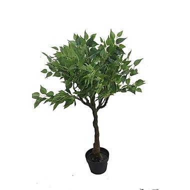 Red Barrel Studio Leaf Floor Bonsai Tree in Pot