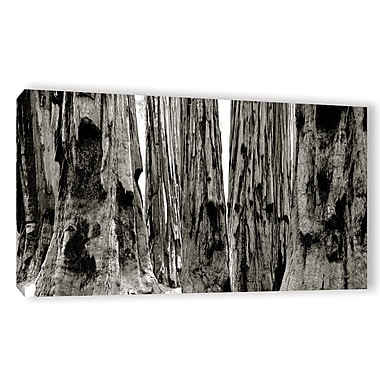 Union Rustic 'California 5' Photographic Print on Wrapped Canvas; 18'' H x 36'' W x 2'' D
