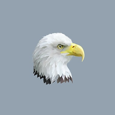 SweetumsWallDecals Eagle Head Printed Wall Decal; 36'' H x 36'' W