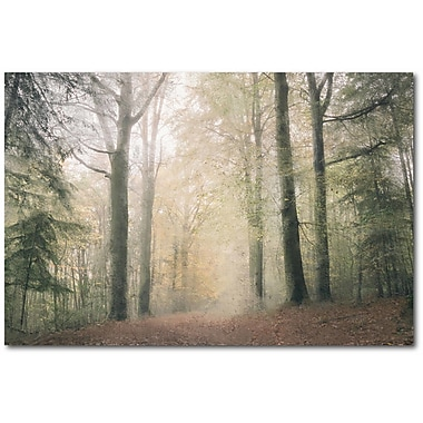 Union Rustic 'Morning Walk' Graphic Art Print on Wrapped Canvas