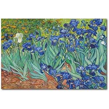Latitude Run 'Irises 1889' Print on Wrapped Canvas