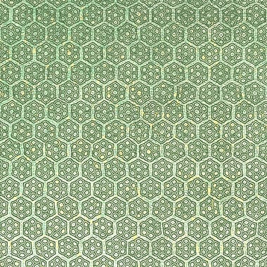Walls Republic Floral Hex 32.5'' x 27.5'' Geometric Wallpaper; Lime