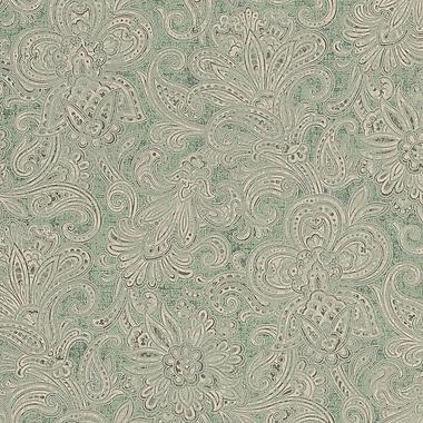 Walls Republic Classic 32.5' x 27.5'' Floral Damask Grecian Fields Wallpaper; Green / White