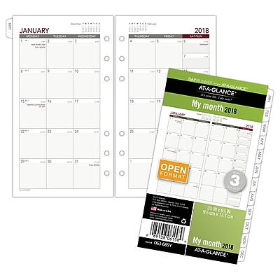 AT-A-GLANCE® Day Runner® Monthly Planner Refill, 12 Months, January Start, Loose-Leaf, 3 3/4
