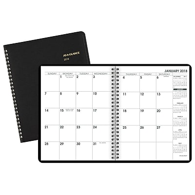 AT-A-GLANCE® Large Print Monthly Planner, 12 Months, January Start, 6 7/8