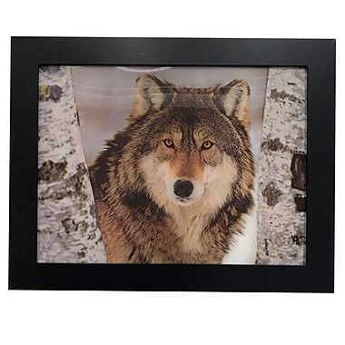 Zoomie Kids '3D Image w/ Wolf' Framed Photographic Print