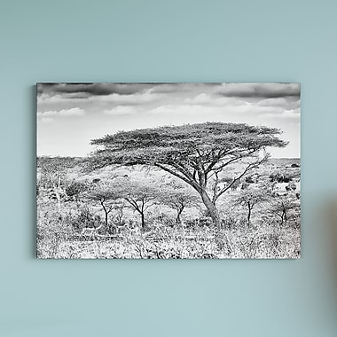 East Urban Home 'Awesome South Africa Series' Horizontal Photographic Print on Wrapped Canvas