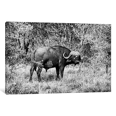 East Urban Home 'Awesome South Africa Series' Rectangle Photographic Print on Wrapped Canvas