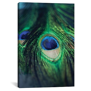 East Urban Home 'Peacock Feathers I' Vertical Graphic Art on Canvas; 18'' H x 12'' W x 0.75'' D